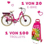 gewinne E-Bikes