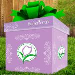Überraschungsgeschenk gratis
