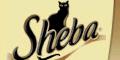 Gewinne mit Sheba