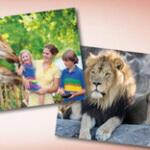 gewinne Zoo Tickets