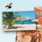 gewinne eien Karibik Reise