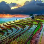 gewinne eine Vietnam Reise