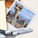 Reise nach Südafrika gewinnen