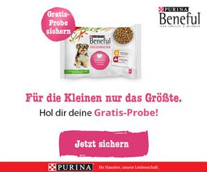Produktproben für Hunde